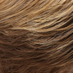 10/26TT-Medium Natural Gold Blonde/Light Red-Gold Blonde Highlights