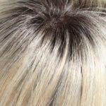 22/16S8-Light Ash Blonde/Light Natural Blonde Blend