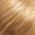 24B/27C-Light Gold Blonde/Light Red-Gold Blonde Blend