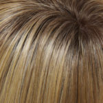 24B/27CS10-Light Gold Blonde/Medium Red-Gold Blend