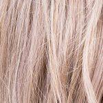 lavender_perucci20